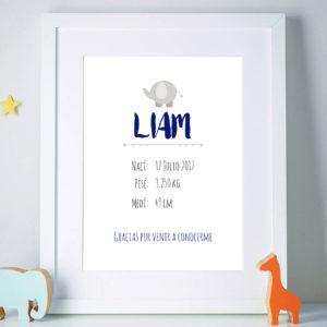 Banner Nacimiento Bebé Elefante