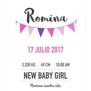 Banner Info Bebé Fiesta Niña