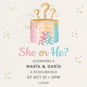 Invitación Gender Reveal Pastel